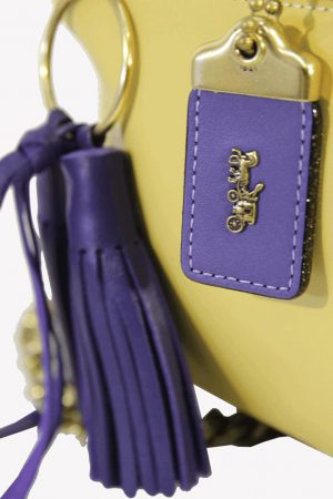 Umhängetasche in Multicolor aus Leder Coach